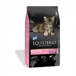 Equilibrio Kittens 0.5kg