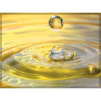 Βελτιωτικά & Συμπληρώματα Νερού