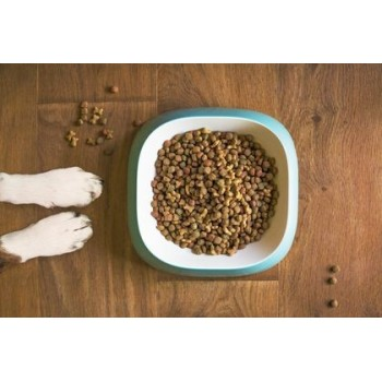 Ξηρά Τροφή Σκύλου