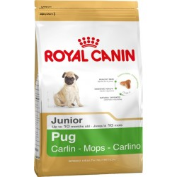 Royal Canin Pug Junior 1.5kg