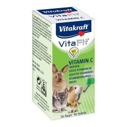 Vita Fit 10ml